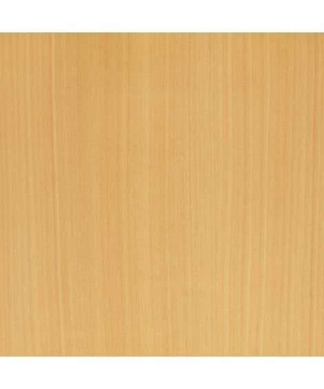 【1cm単位オーダー】収納ラック(奥行19cm/標準タイプ)...