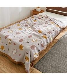 あったか起毛フランネルの綿入り2枚合わせ毛布(はりねずみとポーラベア) 毛布・ブランケットの商品画像