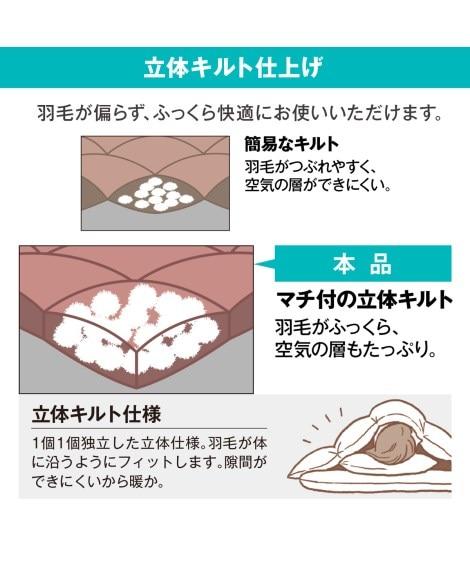 【昭和西川】人気快眠セラピストおすすめ抗菌防臭ふんわり羽毛掛布団(ホワイトダックダウン90%)