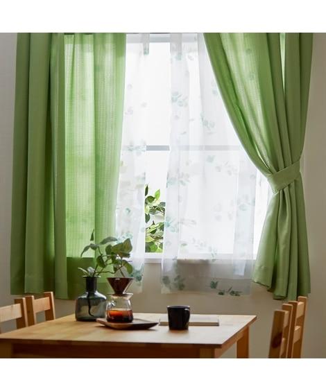 カーテン&ナチュラル柄レース4枚セット(ユーカリ柄) カーテン&レースセット, Curtains, sheer curtains, net curtains(ニッセン、nissen)