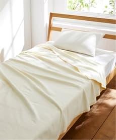 1年中使える 綿100%毛布 毛布・ブランケットの商品画像