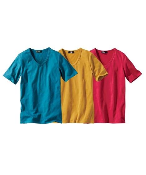 綿100%半袖VネックTシャツ3枚組 (大きいサイズレディー...